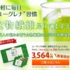 ポイントインカムでユーグレナの緑汁 抹茶仕立てが40,640ポイント(4,064円分)!条件次第で再購入も可能