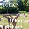 海外で活躍するのにTOEICの点数は関係ないと思う理由