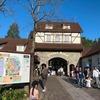 【令和元年GW】10連休最終日は滋賀県『ブルーメの丘』へ。