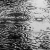【雨】今日も突然の雨。#373点目