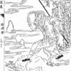 中国四大奇書の中の診断(脈診)