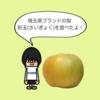埼玉県ブランドの梨「彩玉」を食べてみた!|美味しい梨|贈答用にもおすすめ