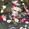 四国第85番札所の五剣山八栗寺