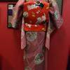 ピンク地あられに丸紋に四季の花小紋×赤地猫に小判お仕立て上がり名古屋帯