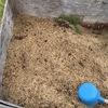 菜園のモミガラ堆肥BOX