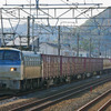 11月15日撮影 東海道線 大磯~二宮間 貨物列車撮影 5094ㇾ 3075ㇾ 5095ㇾ