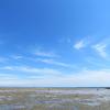 2017年 今年4回目の潮干狩り 川越町の高松海岸へ行くならマテ貝をとるのがオススメ