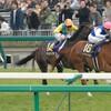 【桜花賞 2018 予想】予想オッズと出走予定馬とデータ分析と個人的見解からいろいろと考察する。