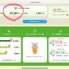 【太陽光発電】売電収入報告(3ヶ月目)