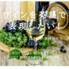 ワインを英語で表現したい!なぜワインには多くの風味が存在するのか ~How Does Wine Have So Many Different Flavors?~