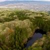 里尻沼(山形県山形)