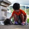 '14.8.20 公園猫(その1)