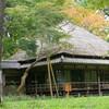 秋の蘆花公園
