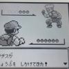 攻略ではなく冒険【ポケモン青プレイ日記4】企業見学
