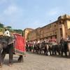 ガネーシャ祭の日に象に乗る🐘
