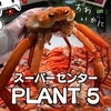 【鳥取 蟹】スーパーの激安紅ズワイガニゲット!2021年10月【PLANT-5境港店】