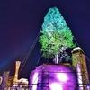 めざせ!世界一のクリスマスツリープロジェクトを調査