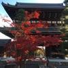 【京都旅行】金戒光明寺でアフロヘアな仏様を拝見