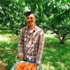 岡山の桃農家から、直接桃を購入しませんか??美味しいよ~