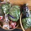 新鮮野菜入荷・土曜日限定の赤飯と草もちも