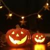 ハロウィンの本当の意味。ドルイド達は【サウィン祭】万霊節に魔よけの火を焚いた。