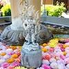 【花手水】三室戸寺のお不動さん、花に囲まれた不動明王【動画あり】