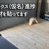春鳴舎ハウス(仮名)進捗 床に板材を貼ってます