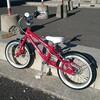 4歳の息子に自転車を買い、30分で乗れるようになった嘘のような本当の話