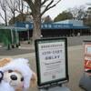 #休園中#上野動物園