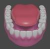 「身体のモデリング」その65 ~歯⑧~。【Blender #416】
