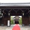 京都国際映画祭 レッドカーペット2019を観覧。