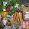 カラフルな野菜たちと牡蠣のコンフィ・・・・海老名へ買い出し