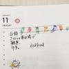 1/11 晴れ