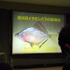 2018/12/15 第9回イタセンパラの勉強会