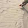 砂場研究家