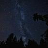 物理学科生が語りたい、そもそも流星群ってなんなん? ロマンチックで神秘的な天体ショー