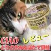 カリカリ派な猫3姉妹がCIAOの缶詰をレビュー。【キャットフード】