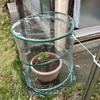 温室の苗の気迫や冬支度(あ)
