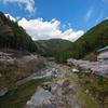 和歌山では数少ない天然療養温泉「藤の森不動温泉だるま湯」に行ったのだが・・・