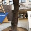 2021年度 関西中学入試④(洛星中・高槻中 算数)
