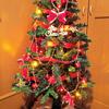 遂に!! 我が家にクリスマスツリー!!