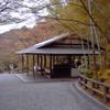 京都2日め