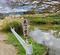 ただら下池(和歌山県海南)