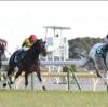 東京新聞杯 2021 データ室 JRA 競馬予想 勝つ