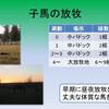 育成馬ブログ 生産編⑤(その2)
