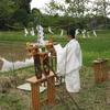 八雲神社神饌田 御田植え祭