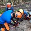 11月の森の学校  7回目~間伐の理論と実践~