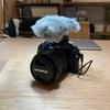 動画撮影が楽しくてついにカメラマイクを買ったでござる。