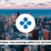 【クロスエクスチェンジ】ついに登場!!次回IEOはCROSS(XCR)トークンセールを行います。