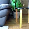 さまざま役立つ北欧の丸い椅子